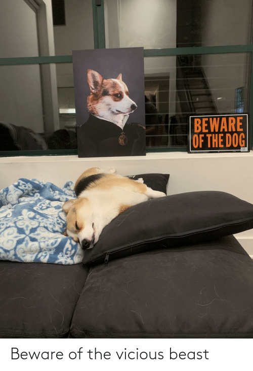 Vicious: Beware of the vicious beast