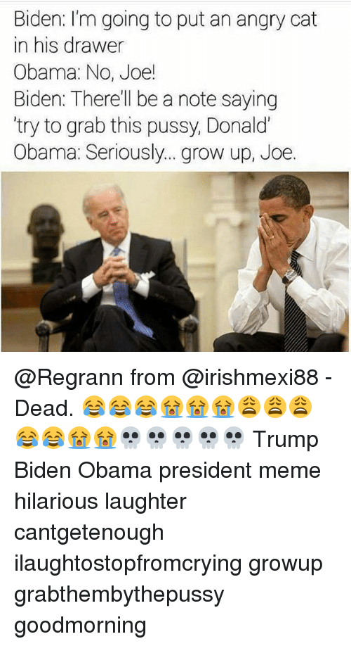 Angry Cat: Biden: I'm going to put an angry cat  in his drawer  Obama: No, Joe!  Biden: There'll be a note saying  try to grab this pussy, Donald  Obama: Seriously... grow up, Joe. @Regrann from @irishmexi88 - Dead. 😂😂😂😭😭😭😩😩😩😂😂😭😭💀💀💀💀💀 Trump Biden Obama president meme hilarious laughter cantgetenough ilaughtostopfromcrying growup grabthembythepussy goodmorning