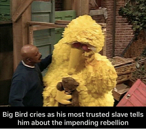 Big Bird: Big Bird cries as his most trusted slave tells  him about the impending rebellion