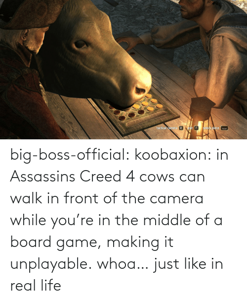 The Middle: big-boss-official: koobaxion: in Assassins Creed 4 cows can walk in front of the camera while you're in the middle of a board game, making it unplayable. whoa… just like in real life