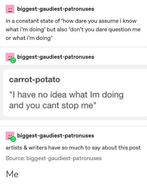 """Or What: biggest-gaudiest-patronuses  in a constant state of 'how dare you assume i know  what i'm doing' but also 'don't you dare question me  or what i'm doing'  biggest-gaudiest-patronuses  carrot-potato  """"I have no idea what Im doing  and you cant stop me""""  biggest-gaudiest-patronuses  artists & writers have so much to say about this post  Source: biggest-gaudiest-patronuses Me"""
