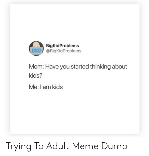 Meme, Kids, and Mom: BigKidProblems  BKP @BigKidProblems  Mom: Have you started thinking about  kids?  Me: I am kids Trying To Adult  Meme Dump