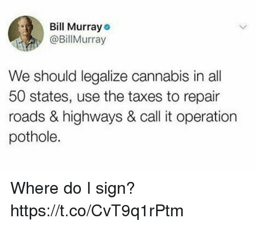 All 50 States: Bill Murray  @BillMurray  We should legalize cannabis in all  50 states, use the taxes to repair  roads & highways & call it operation  pothole. Where do I sign? https://t.co/CvT9q1rPtm