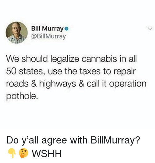 All 50 States: Bill Murray  @BillMurray  We should legalize cannabis in all  50 states, use the taxes to repair  roads & highways & call it operation  pothole. Do y'all agree with BillMurray? 👇🤔 WSHH