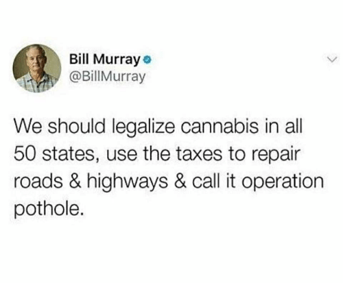 All 50 States: Bill Murray  @BillMurray  We should legalize cannabis in all  50 states, use the taxes to repair  roads & highways & call it operation  pothole.