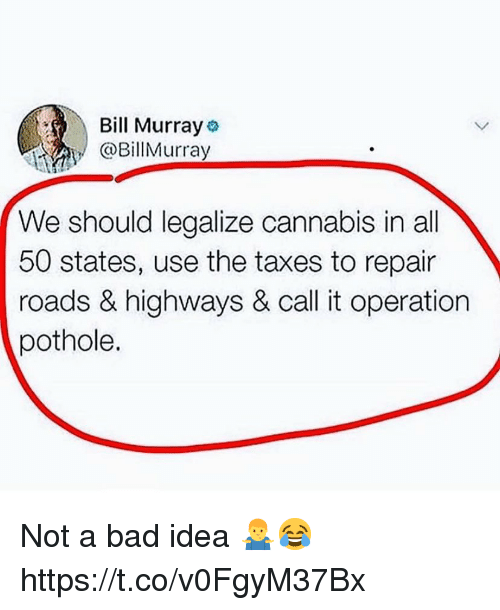 All 50 States: Bill Murray  @BillMurray  We should legalize cannabis in all  50 states, use the taxes to repair  roads & highways & call it operation  pothole. Not a bad idea 🤷♂️😂 https://t.co/v0FgyM37Bx