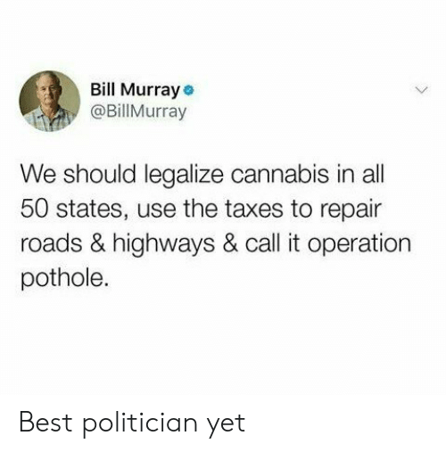 All 50 States: Bill Murray  @BillMurray  We should legalize cannabis in all  50 states, use the taxes to repair  roads & highways & call it operation  pothole. Best politician yet