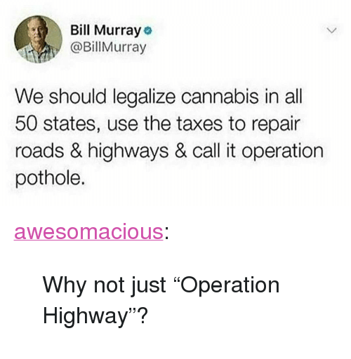 """All 50 States: Bill Murray o  @Billurray  We should legalize cannabis in all  50 states, use the taxes to repair  roads & highways & call it operation  pothole. <p><a href=""""http://awesomacious.tumblr.com/post/173558958201/why-not-just-operation-highway"""" class=""""tumblr_blog"""">awesomacious</a>:</p>  <blockquote><p>Why not just """"Operation Highway""""?</p></blockquote>"""