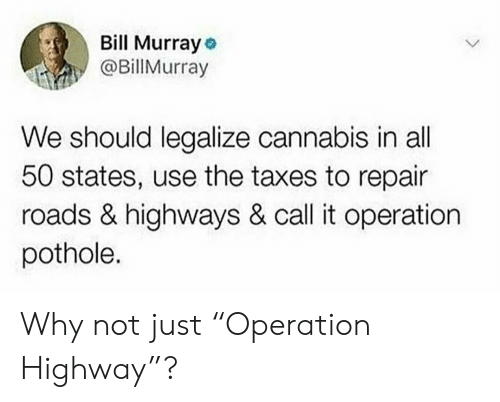 """All 50 States: Bill Murray o  @Billurray  We should legalize cannabis in all  50 states, use the taxes to repair  roads & highways & call it operation  pothole. Why not just """"Operation Highway""""?"""