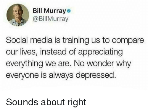 Social Media, Wonder, and Media: Bill Murrayo  @BillMurray  Social media is training us to compare  our lives, instead of appreciating  everything we are. No wonder why  everyone is always depressed Sounds about right