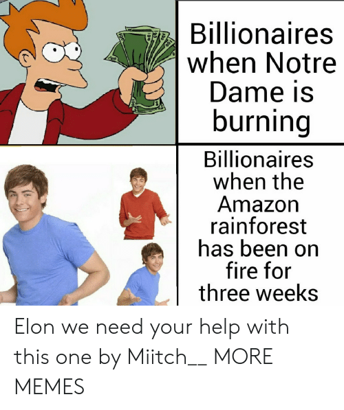 Need Your Help: Billionaires  when Notre  Dame is  burning  Billionaires  when the  Amazon  rainforest  has been on  fire for  three weeks Elon we need your help with this one by Miitch__ MORE MEMES