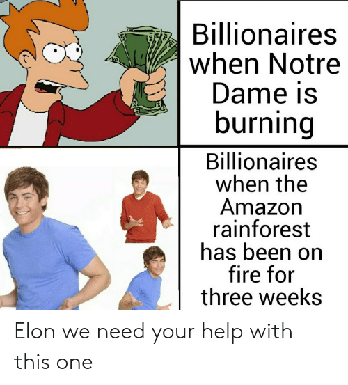 Amazon, Fire, and Help: Billionaires  when Notre  Dame is  burning  Billionaires  when the  Amazon  rainforest  has been on  fire for  three weeks Elon we need your help with this one