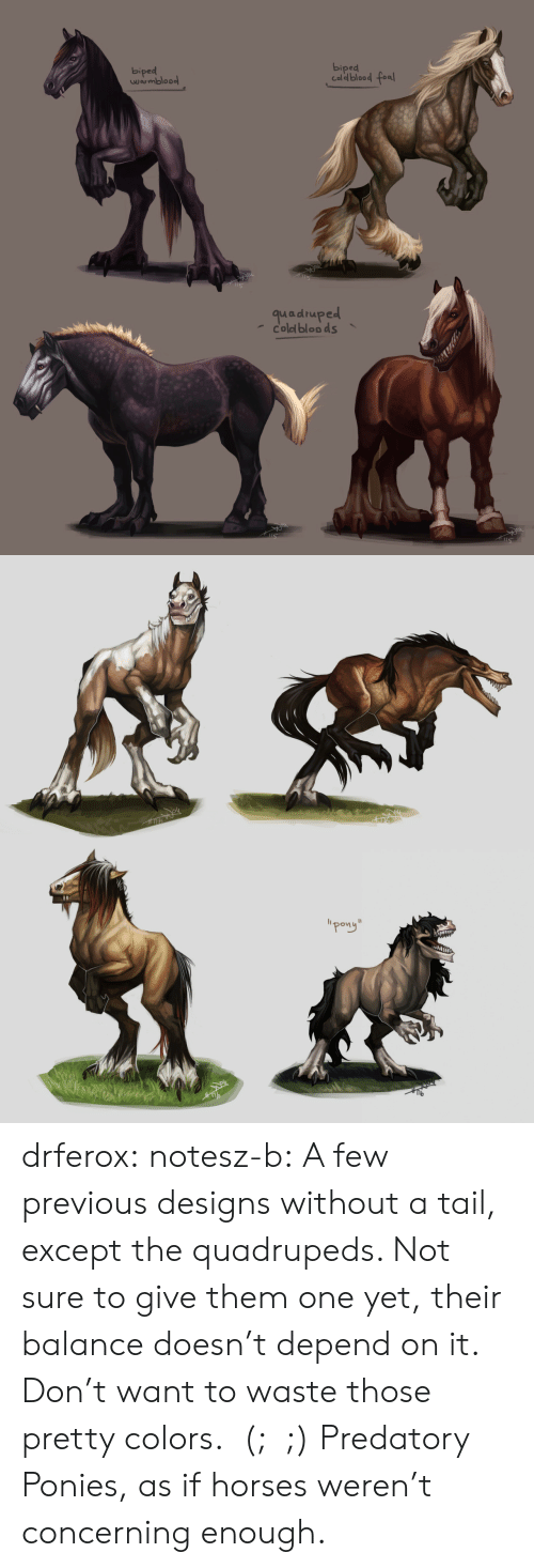 """Horses, Target, and Tumblr: biped  biped  Caldblood fea  wrmbloo  quadruped  coled bloo ds   """"pong"""" drferox:  notesz-b:  A few previous designs without a tail, except the quadrupeds. Not sure to give them one yet, their balance doesn't depend on it. Don't want to waste those pretty colors.  (;﹏;)    Predatory Ponies, as if horses weren't concerning enough."""