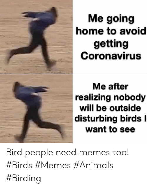 Birds: Bird people need memes too! #Birds #Memes #Animals #Birding