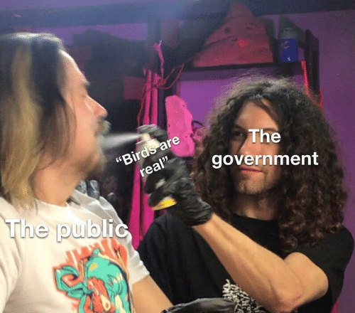 "Birds, Government, and Public: ""Birds are  real""  The  government  The public"