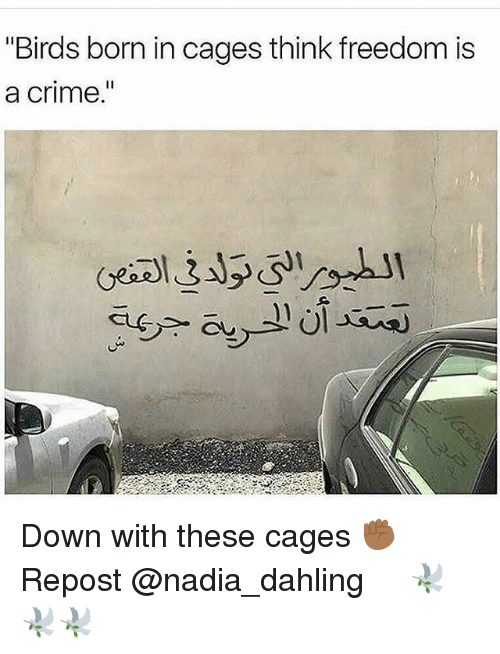 "Criming: ""Birds born in cages think freedom is  a crime  I1 Down with these cages ✊🏾 Repost @nadia_dahling ・・・ 🕊🕊🕊"