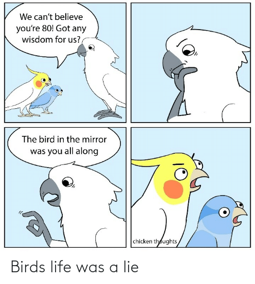 Birds: Birds life was a lie