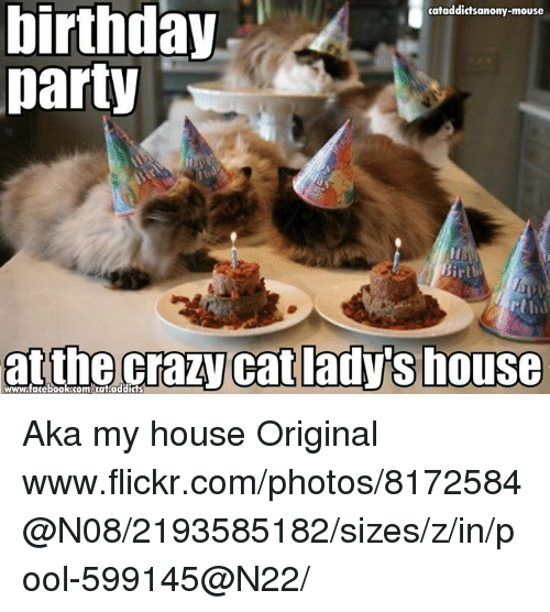 crazy cats: birthday  cataddictsanony-mouse  party  irth  at the crazy cat adys house Aka my house  Original www.flickr.com/photos/8172584@N08/2193585182/sizes/z/in/pool-599145@N22/