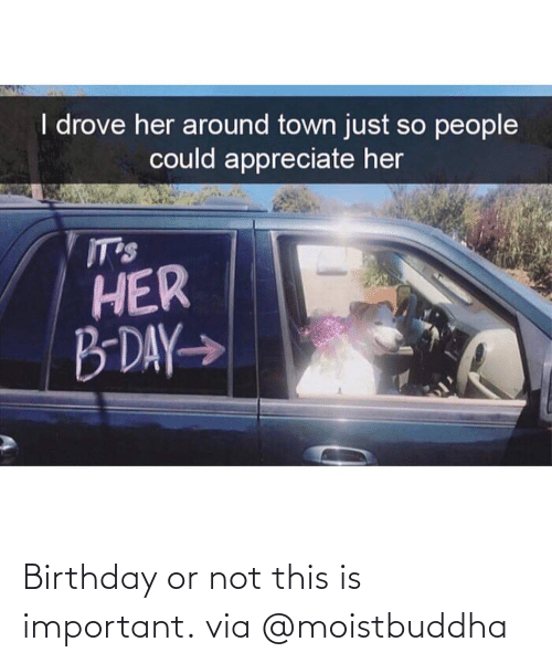 Not This: Birthday or not this is important. via @moistbuddha