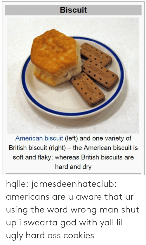 Americanization: Biscuit  American biscuit (left) and one variety of  British biscuit (right) - the American biscuit is  soft and flaky; whereas British biscuits are  hard and dry hqlle:  jamesdeenhateclub:  americans are u aware that ur using the word wrong  man shut up i swearta god with yall lil ugly hard ass cookies