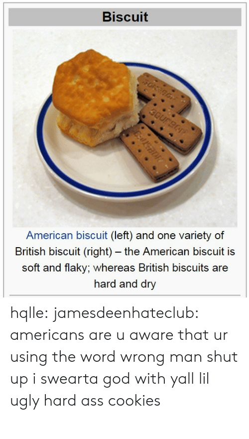biscuits: Biscuit  American biscuit (left) and one variety of  British biscuit (right) - the American biscuit is  soft and flaky; whereas British biscuits are  hard and dry hqlle:  jamesdeenhateclub:  americans are u aware that ur using the word wrong  man shut up i swearta god with yall lil ugly hard ass cookies