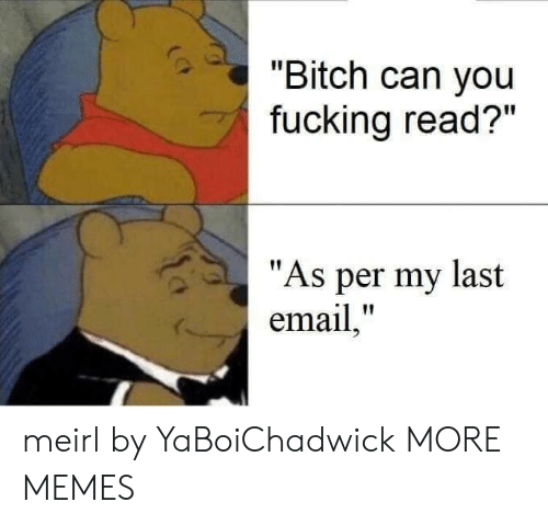 "Bitch, Dank, and Fucking: ""Bitch can you  fucking read?""  ""As per my last  email,"" meirl by YaBoiChadwick MORE MEMES"