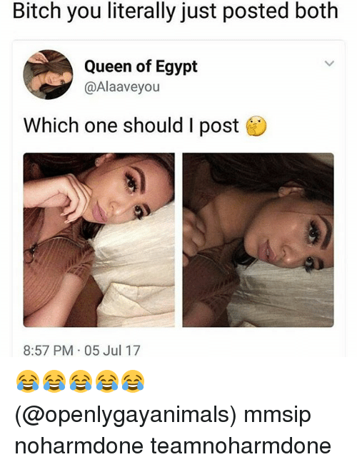 Egypte: Bitch you literally just posted both  Queen of Egypt  @Alaaveyou  Which one should I post  8:57 PM 05 Jul 17 😂😂😂😂😂 (@openlygayanimals) mmsip noharmdone teamnoharmdone