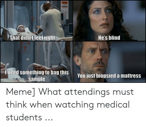 Medical Student Memes: BitHAZARD  HAZTE  That didn't feel right  He's blind  Ineed something to bag this  sample  You just biopsied a mattress Meme] What attendings must think when watching medical students ...