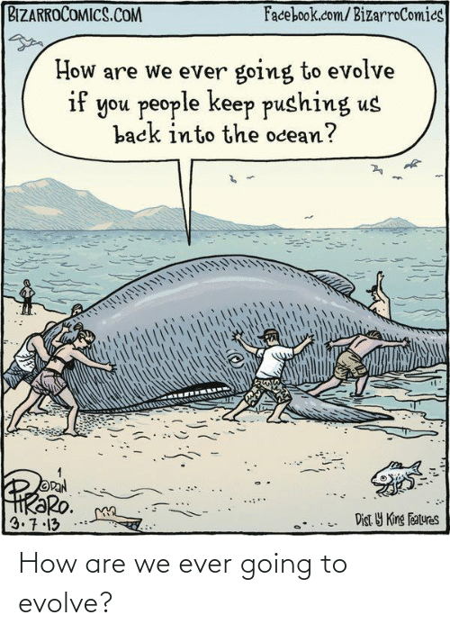 Hr: BIZARROCOMICS.COM  Facebook.com/BizarroComics  How are we ever going to evolve  if you people keep pushing us  back into the ocean?  OPAN  HRƏRO.  3.7.13  Dist Y King Features How are we ever going to evolve?