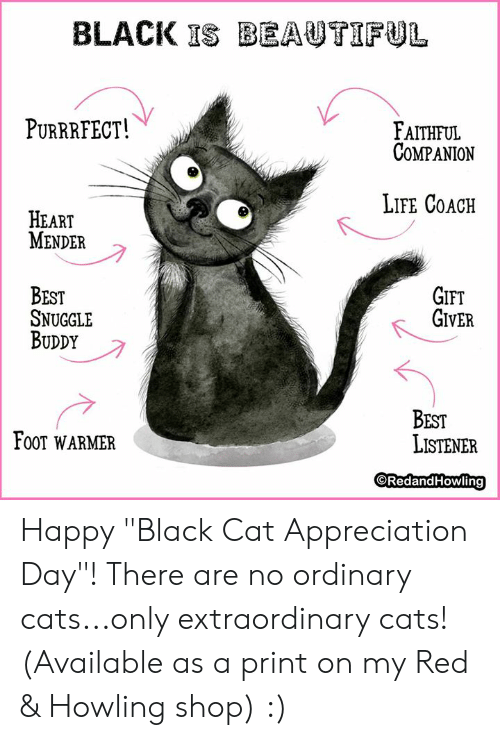"Cats, Life, and Memes: BLACK ISBEAUTIFUL  PURRRFECT!  FAITHFUL  COMPANION  LIFE COACH  HEART  MENDER  GIFT  GIVER  BEST  SNUGGLE  BUDDY  BEST  LISTENER  FOOT WARMER  ORedandHowling Happy ""Black Cat Appreciation Day""!  There are no ordinary cats...only extraordinary cats!  (Available as a print on my Red & Howling shop) :)"