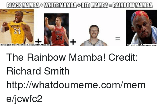 Facebook, Meme, and Nba: BLACK MAMBA WHITE MAMBA DRED MAMBA BRAINBOWI MAMBA  Brought By: Facebook.com/NBAMemes The Rainbow Mamba!