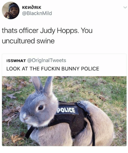 Judy Hopps: @BlacknMild  thats officer Judy Hopps. You  uncultured swine  ISSWHAT @OriglnalTweets  LOOK AT THE FUCKIN BUNNY POLICE  OLICE