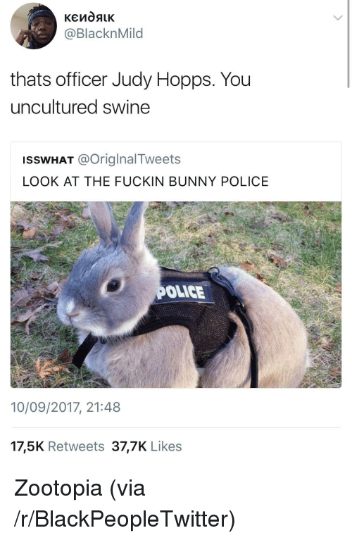 Judy Hopps: @BlacknMild  thats officer Judy Hopps. You  uncultured swine  ISSWHAT @OriglnalTweets  LOOK AT THE FUCKIN BUNNY POLICE  OLICE  10/09/2017, 21:48  17,5K Retweets 37,7K Likes <p>Zootopia (via /r/BlackPeopleTwitter)</p>