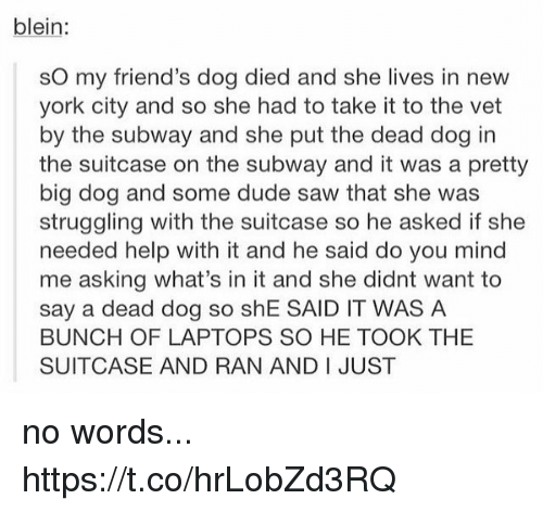 big dog: blein:  sO my friend's dog died and she lives in new  york city and so she had to take it to the vet  by the subway and she put the dead dog in  the suitcase on the subway and it was a pretty  big dog and some dude saw that she was  struggling with the suitcase so he asked if she  needed help with it and he said do you mind  me asking what's in it and she didnt want to  say a dead dog so shE SAID IT WAS A  BUNCH OF LAPTOPS SO HE TOOK THE  SUITCASE AND RAN AND I JUST no words... https://t.co/hrLobZd3RQ
