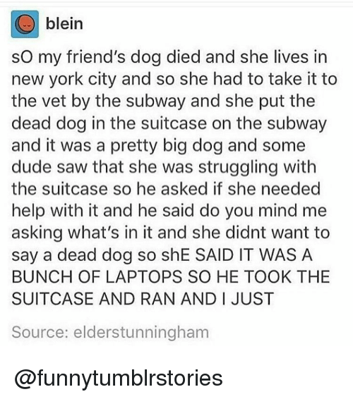 sourcing: blein  so my friend's dog died and she lives in  new york city and so she had to take it to  the vet by the subway and she put the  dead dog in the suitcase on the subway  and it was a pretty big dog and some  dude saw that she was struggling with  the suitcase so he asked if she needed  help with it and he said do you mind me  asking what's in it and she didnt want to  say a dead dog so shE SAID IT WAS A  BUNCH OF LAPTOPS SO HE TOOK THE  SUITCASE AND RAN AND I JUST  Source: elderstunningham @funnytumblrstories