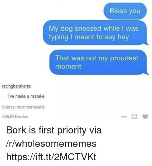Dog, Source, and Via: Bless you  My dog sneezed while I was  typing I meant to say hey  That was not my proudest  moment  racingbarakarts:  I've made a mistake  Source: racingbarakarts  555,868 notes Bork is first priority via /r/wholesomememes https://ift.tt/2MCTVKt