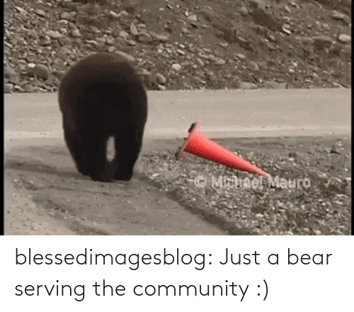 Bear: blessedimagesblog:  Just a bear serving the community :)