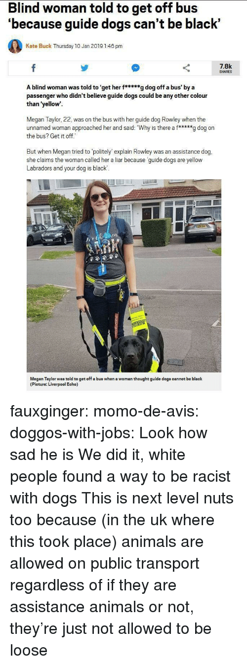 Animals, Dogs, and Megan: Blind woman told to get off bus  'because guide dogs can't be black'  Kate Buck Thursday 10 Jan 2019 1:46 pm  7.8k  SHARES  A blind woman was told to 'get her f*****g dog off a bus' by a  passenger who didn't believe guide dogs could be any other colour  than 'yellow  Megan Taylor, 22, was on the bus with her guide dog Rowley when the  unnamed woman approached her and said: Why is there a f*****g dog on  the bus? Get it off  But when Megan tried to politely' explain Rowley was an assistance dog,  she claims the woman called her a liar because guide dogs are yellow  Labradors and your dog is black  1  Megan Taylor was told to get off a bus when a woman thought guide dogs cannot be black  (Picture: Liverpool Echo) fauxginger:  momo-de-avis:  doggos-with-jobs:  Look how sad he is  We did it, white people found a way to be racist with dogs   This is next level nuts too because (in the uk where this took place) animals are allowed on public transport regardless of if they are assistance animals or not, they're just not allowed to be loose