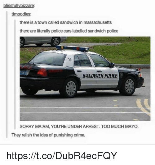 police cars: blissfullybizzare  timoodles:  there is a town called sandwich in massachusetts  there are literally police cars labelled sandwich police  SAMOMILIH POLICE  SORRY MA'AM, YOU'RE UNDER ARREST. TOO MUCH MAYO.  They relish the idea of punishing crime. https://t.co/DubR4ecFQY