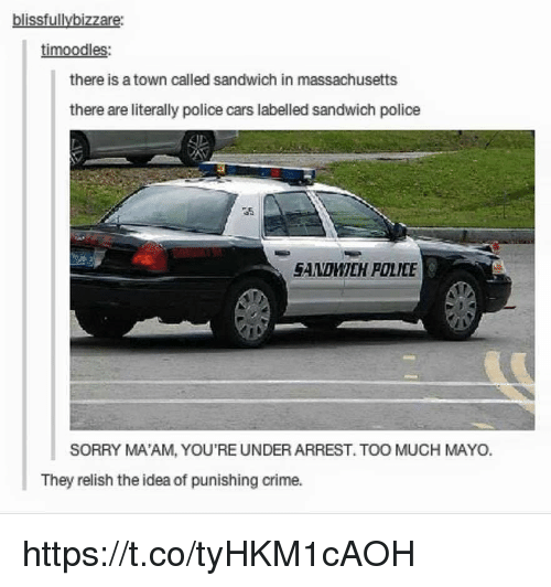 police cars: blissfullybizzare:  timoodles:  there is a town called sandwich in massachusetts  there are literally police cars labelled sandwich police  GANDMICH POLCE  SORRY MA'AM, YOU'RE UNDER ARREST. TOO MUCH MAYO.  They relish the idea of punishing crime. https://t.co/tyHKM1cAOH