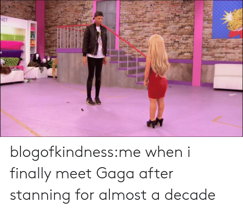 Target, Tumblr, and Blog: blogofkindness:me when i finally meet Gaga after stanning for almost a decade