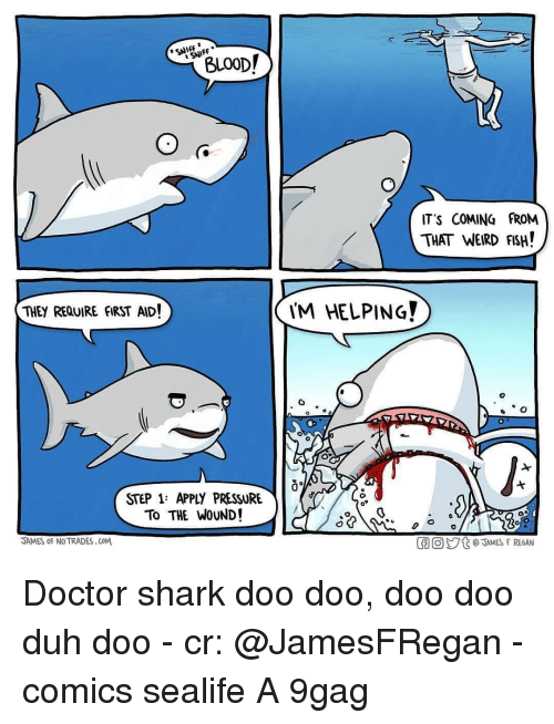 doo doo: BLOOD!  SNIFF  IT'S COMING FROM  THAT WEIRD FSH!  THEY REQUIRE FIRST AID!  M HELPING  STEP 1: APPLY PRESSURE  To THE WOUND!  JAMES oF NO TRADES.CoM  胴回ジt @TAMES F REGAN Doctor shark doo doo, doo doo duh doo - cr: @JamesFRegan - comics sealife A 9gag