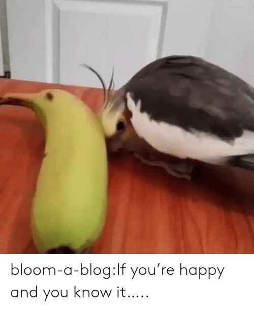 bloom: bloom-a-blog:If you're happy and you know it…..