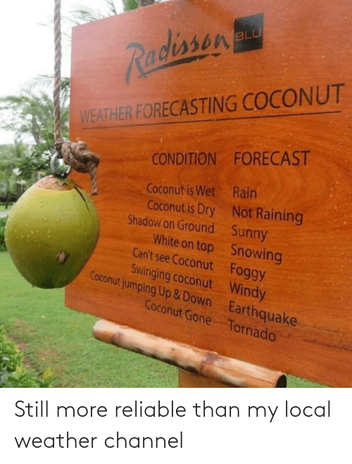 can't see: BLU  Radissen  WEATHER FORECASTING COCONUT  CONDITION FORECAST  Coconut is Wet Rain  Coconut is Dry Not Raining  Shadow on Ground Sunny  White on top Snowing  Can't see Coconut Foggy  Swinging coconut Windy  Coconut jumping Up &Down Earthquake  Coconut Gone Tornado Still more reliable than my local weather channel