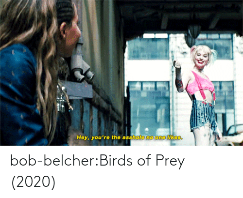 Birds: bob-belcher:Birds of Prey (2020)