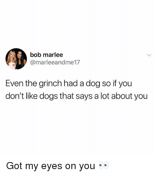 Dogs, The Grinch, and Memes: bob marlee  @marleeandme17  Even the grinch had a dog so if you  don't like dogs that says a lot about you Got my eyes on you 👀
