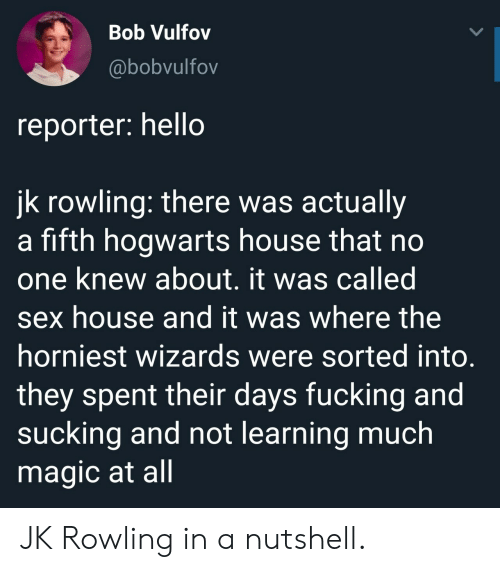 Sorted: Bob Vulfov  @bobvulfov  reporter: hello  jk rowling: there was actually  a fifth hogwarts house that no  one knew about. it was called  sex house and it was where the  horniest wizards were sorted into  they spent their days fucking and  sucking and not learning much  magic at all JK Rowling in a nutshell.