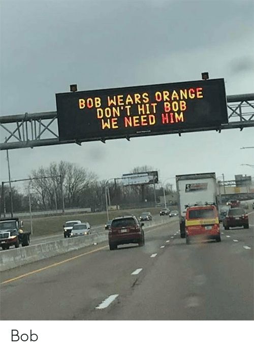 Orange, Him, and Bob: BOB WEARS ORANGE  DON'T HIT B0B  WE NEED HIM Bob