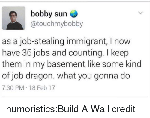 what you gonna do: bobby sun  @touchmybobby  as a job-stealing immigrant, I now  have 36 jobs and counting. I keep  them in my basement like some kind  of job dragon. what you gonna do  7:30 PM 18 Feb 17 humoristics:Build A Wall credit