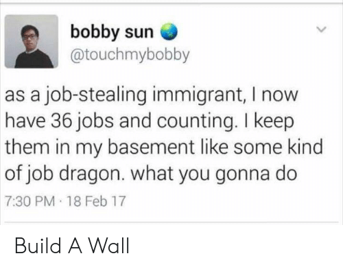 what you gonna do: bobby sun  @touchmybobby  as a job-stealing immigrant, I now  have 36 jobs and counting. I keep  them in my basement like some kind  of job dragon. what you gonna do  7:30 PM 18 Feb 17 Build A Wall